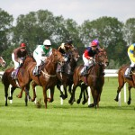 Horse Racing Tickets and Hospitality Packages